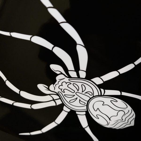 Crisp Black and White Spider Print