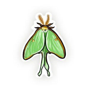 Luna Moth Illustration, Vinyl Sticker Art